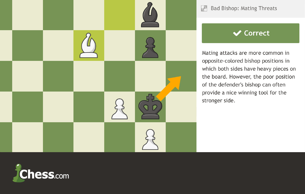 Jorge Sammour-Hasbun – Chess Coach Profile